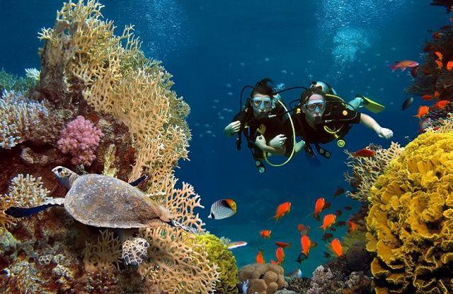 Duiken en snorkelen in Cartagena - DroomHuisSpanje
